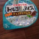 トルコ風アイス・チョコチップミント