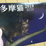 多摩猫カレンダー 小西修